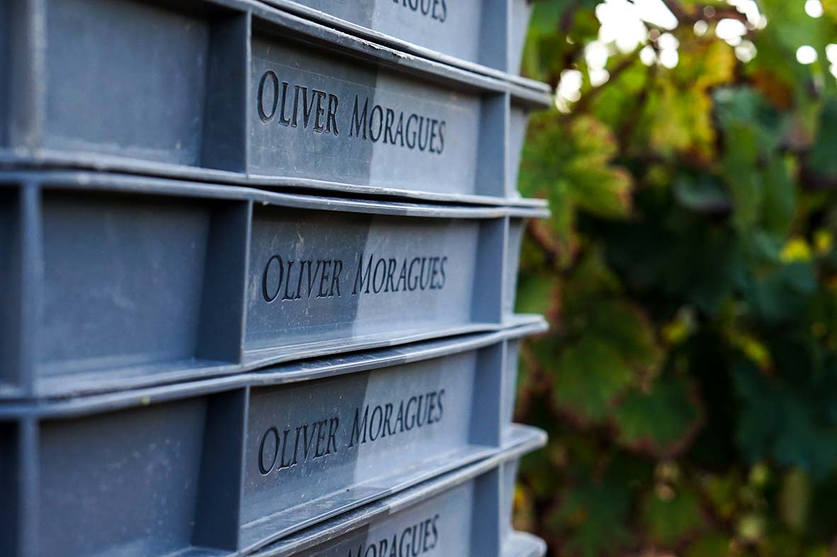Oliver Moragues - Grand House & Wineyard Since 1511